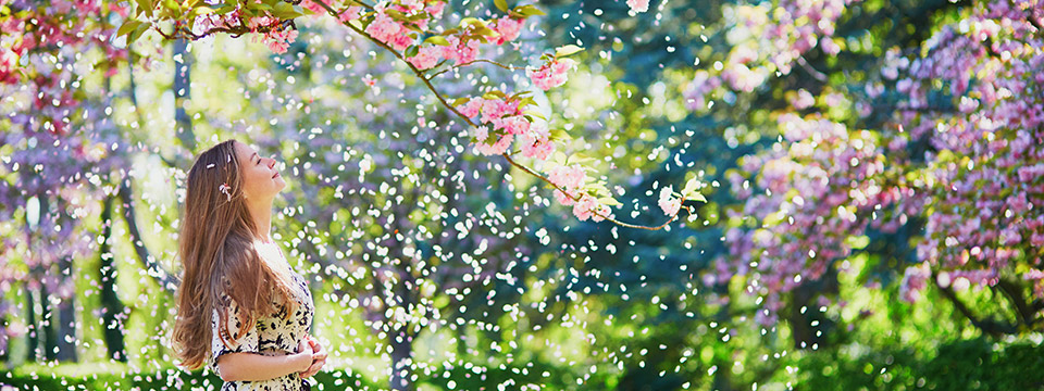 Photo of a beautiful girl standing in a cherry blossom garden on a spring day with flower petals falling from the trees.