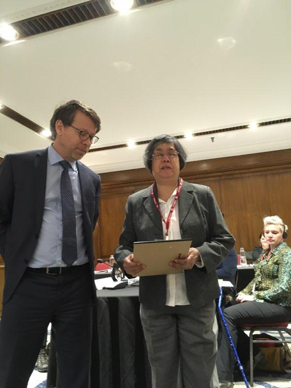 Advisory Group for Disability Issues Meeting Picture. November 20th 2018. S. Perrault and D. Jodhan Speaking.