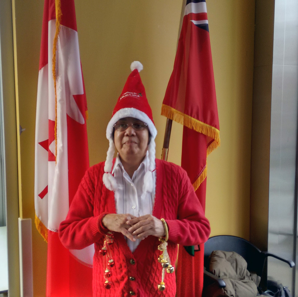 Author Donna Jodhan solo as Mrs. Claus with flags behind.